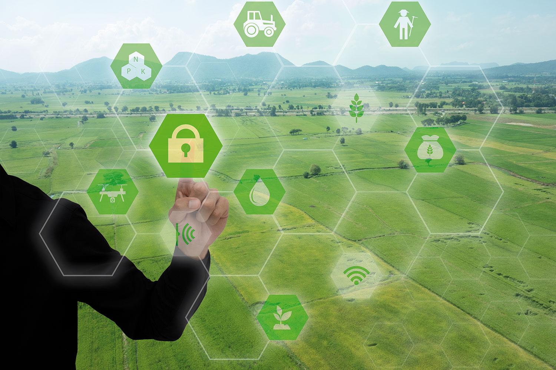 C84 - La alimentación en 2025 y el impacto de la digitalización