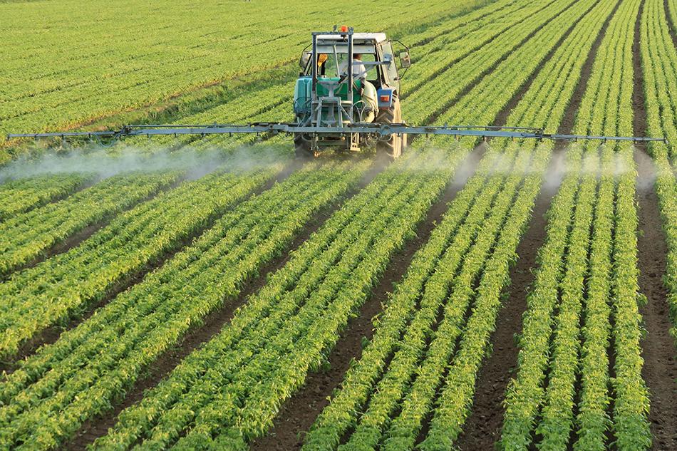 El proyecto para reducir el coste ambiental del cultivo